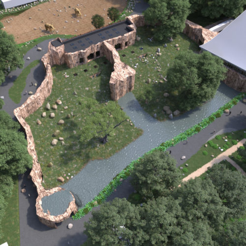 Bonoboverblijf Ouwehands Dierenpark